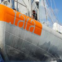 Etrave de Tara en pleine navigation © Maeva Bardy - Fondation Tara Océan